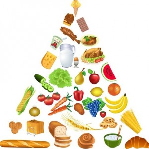 3-food-pyramid-vector-10740